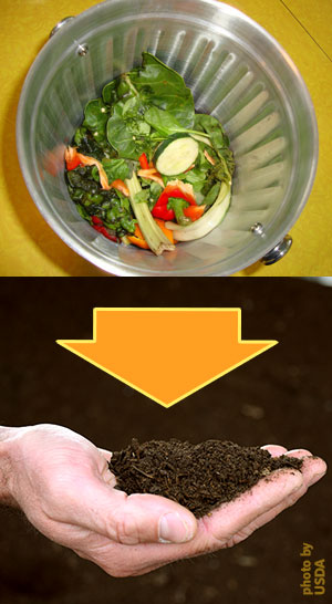 compost black gold